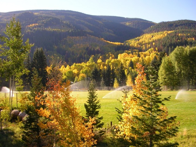 Donovan Park Fall Colors
